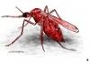 redm0squito76