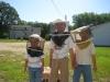 Bee Guy