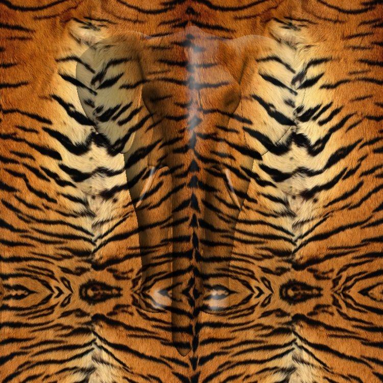 A Realistic Tiger Fur Pattern K40Forums Magnificent Tiger Pattern