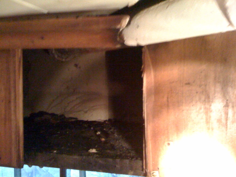 Steam Leak From Pipe : Leaking steam pipe in basement — heating help the wall
