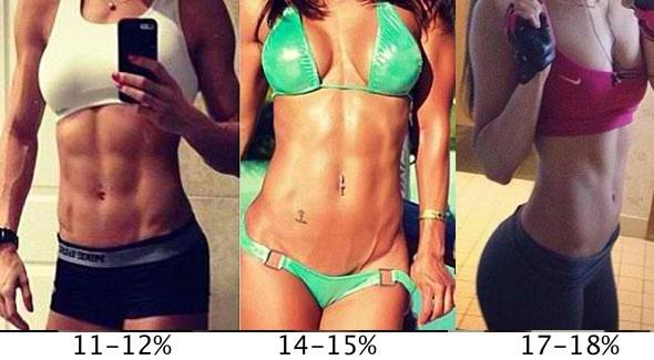 average body fat for women № 79575