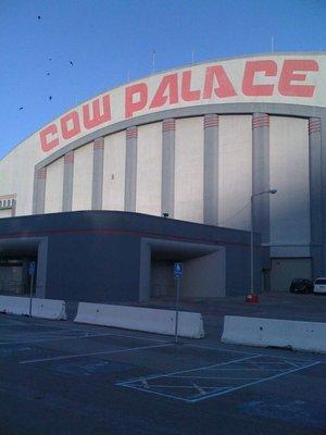 cow palce 3.jpg