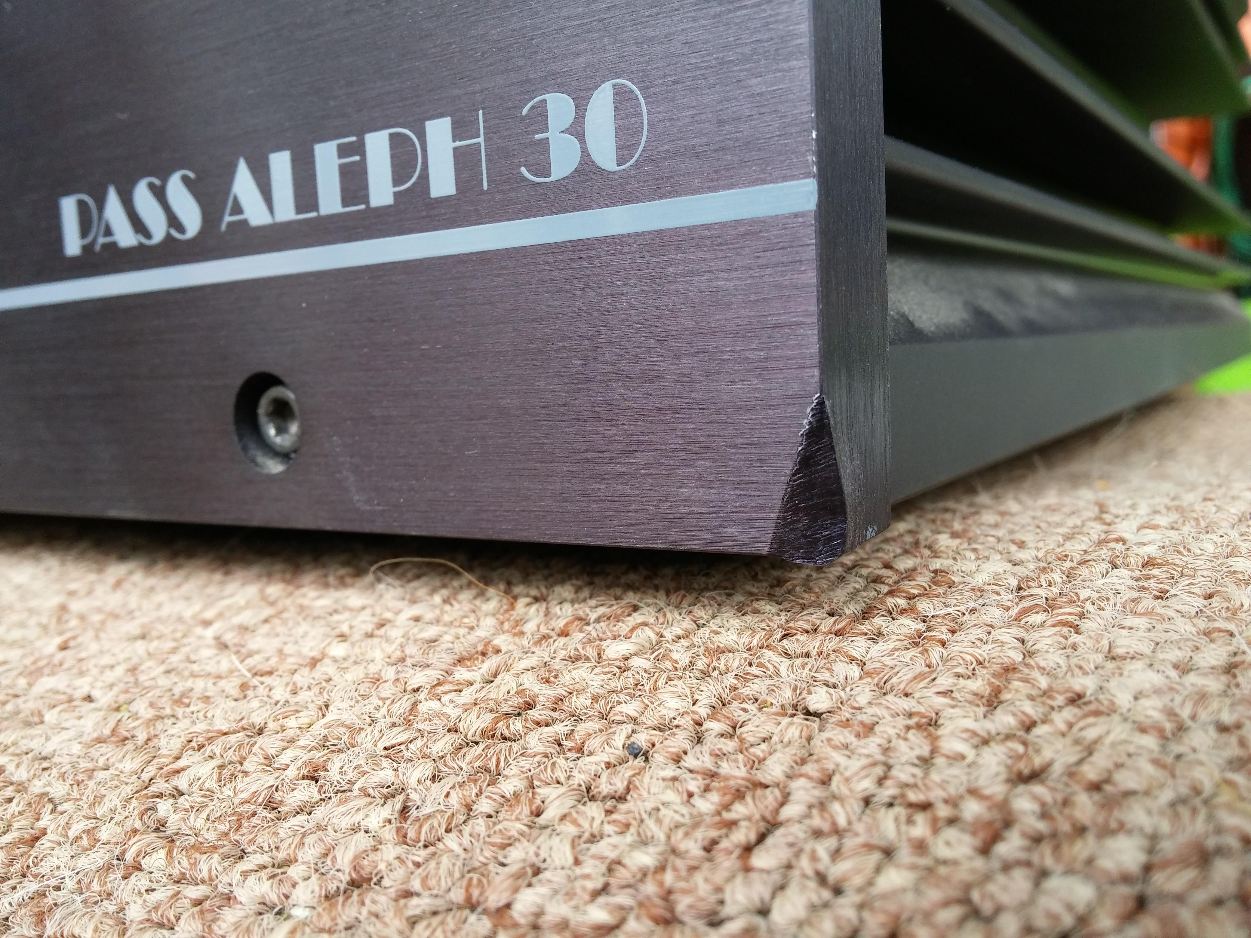 Pass Labs Aleph 30 power amplifier — Polk Audio