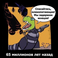 Ransom_Stark