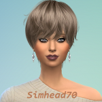 simhead70