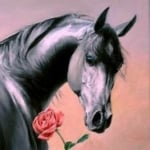 TheRoseHorse