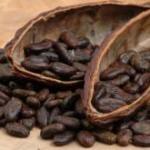 cacaocanele