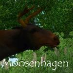 Moosenhagen