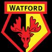 watford110