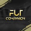 FUTcompanion