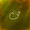 Synabon