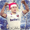 Claret_n_blue_blood
