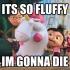 HilfyFluffy