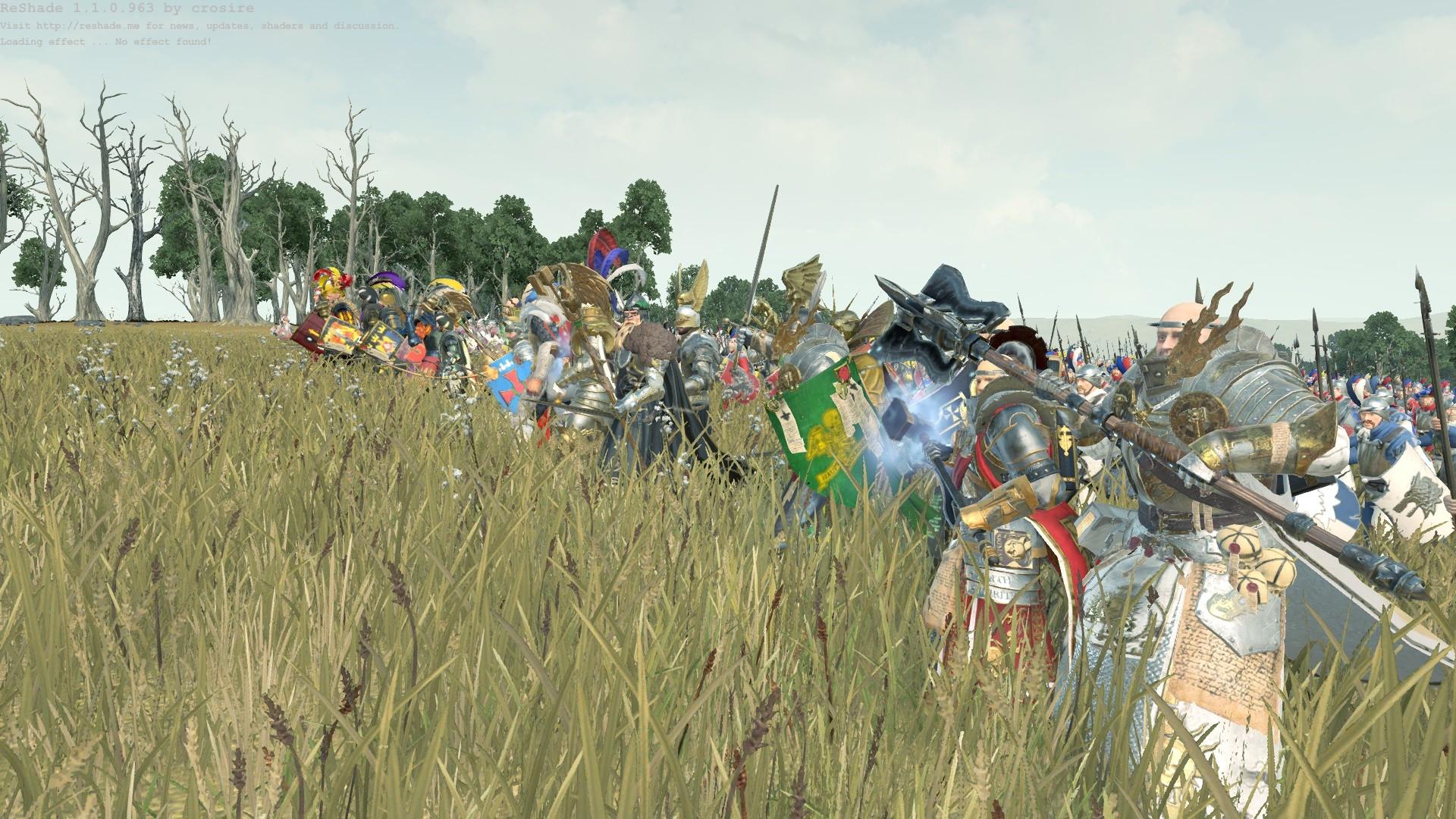 Karl Franz: summon my electors! — Total War Forums