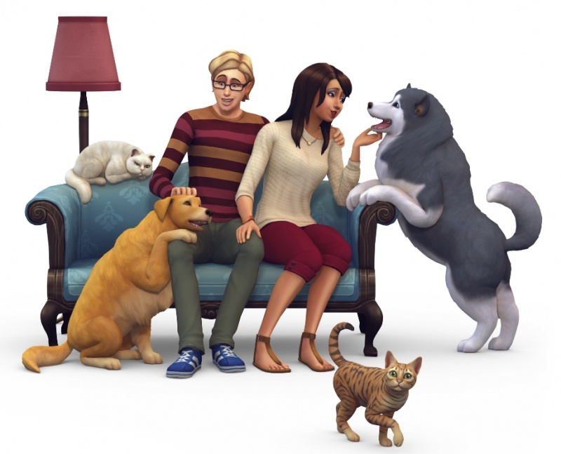 Sims  Cats And Dogs Broke My Game