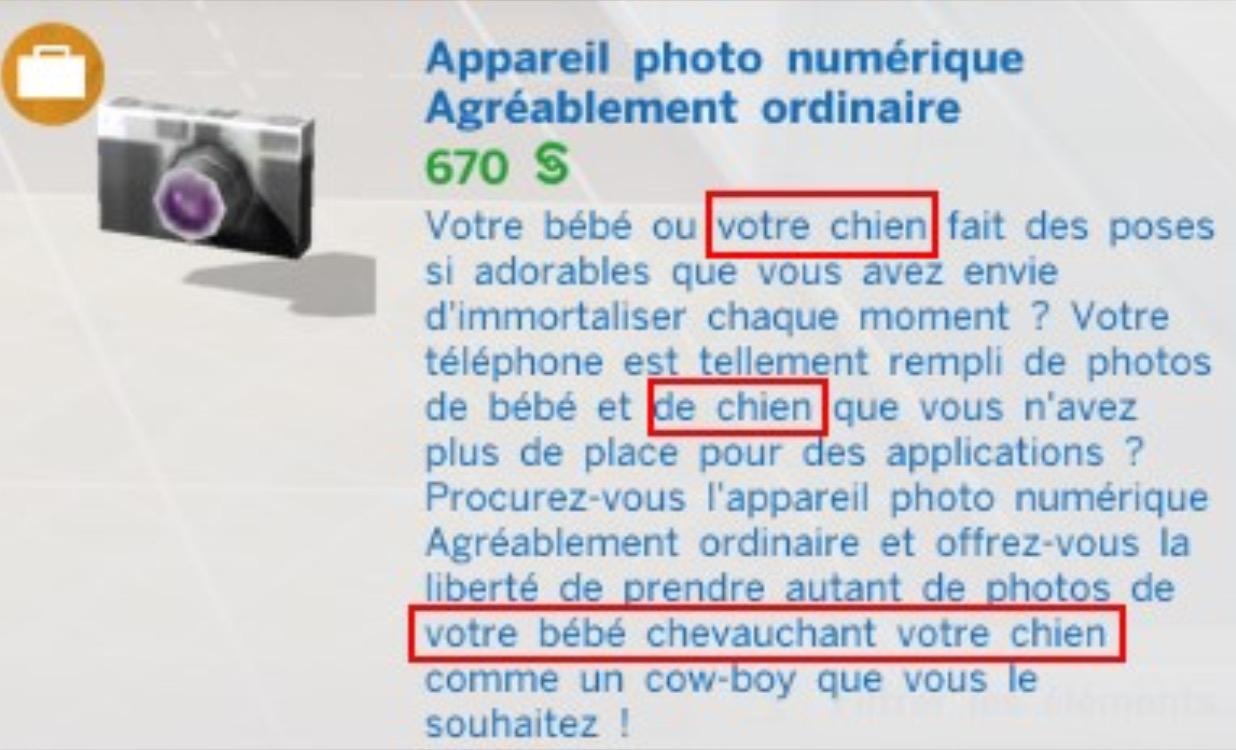 sims 4 appareil photo