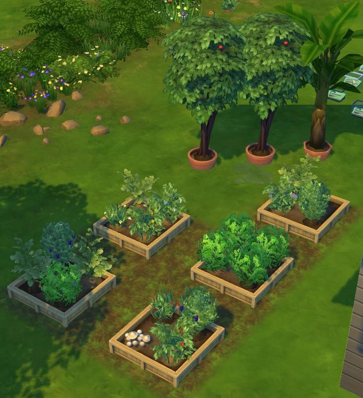 Guide le jardinage oct 2014 les sims for Sims 4 jardin romantico