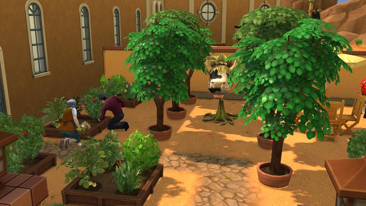 Cr er un jardin potager dans un espace communautaire les - Creer un jardin potager ...