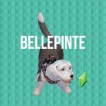 BellePinte
