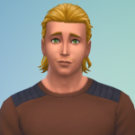 The_FrenchSims