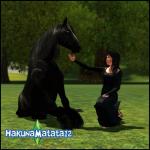 HakunaMatata12
