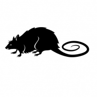 RattyUK