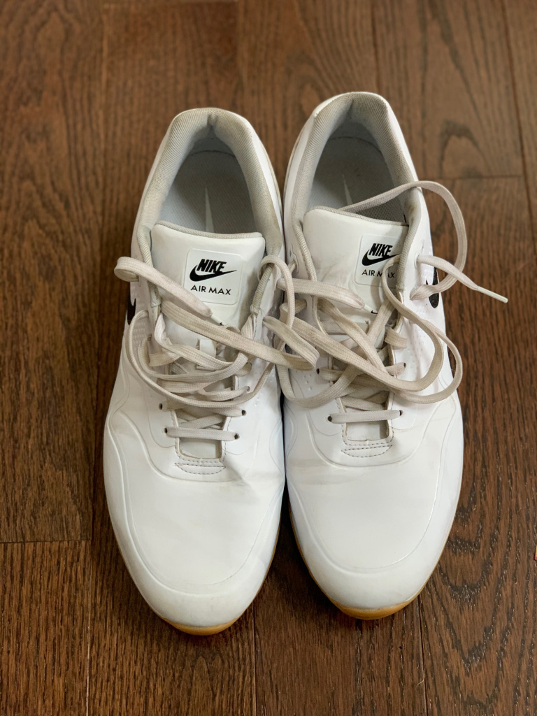 Nike Air Max_white.jpg