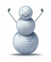 golfcart22