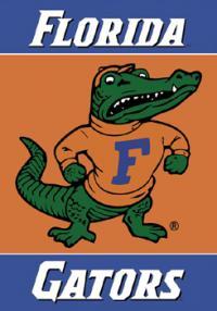 GatorsFifa