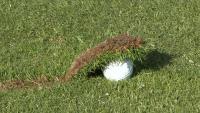 Golfsmitty
