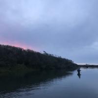 flyfishinggolfer