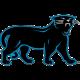 Ping Panther