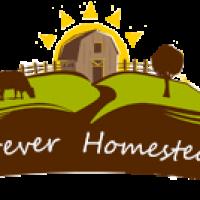 ForeverHomestead
