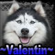 ~Valentin~ (RO1)