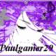 paulgamer29