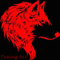 tuning911 (FR1)