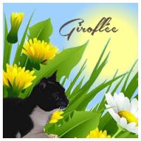 Giroflée (FR1)