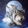 Wolfsbruder (DE1)