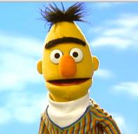 Bert_ (DE1)