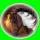 sylwiazelazna (PL1)