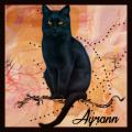 AYRANN (INT1)