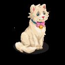 Katze-Lilli (DE1)