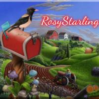 RosyStarling