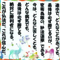 石川県生まれのダミアン (JP1)