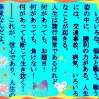 白間美瑠可愛い (JP1)
