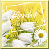 flipside4 (FR1)