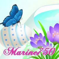 Marine750 (FR1)