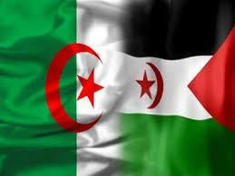 صور لـ علم فلسطين و الجزائر معاً — Goodgame Empire Forum