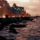 eyad_alrasheedi