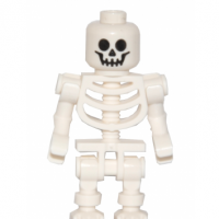 Skeleton25 (FR1)